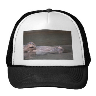 Hungry Hippo Trucker Hat