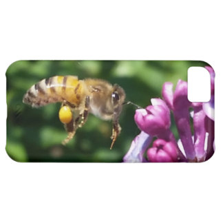 Hungry Honey Bee and Lilacs iPhone 5C Cover