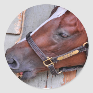 Hungry Horse Classic Round Sticker