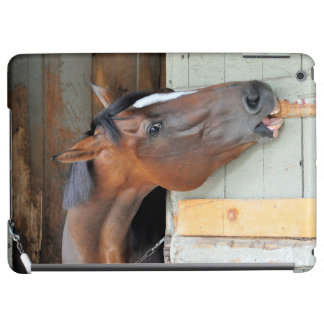 Hungry Horse iPad Air Case