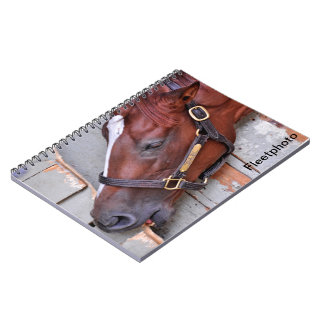 Hungry Horse Notebook