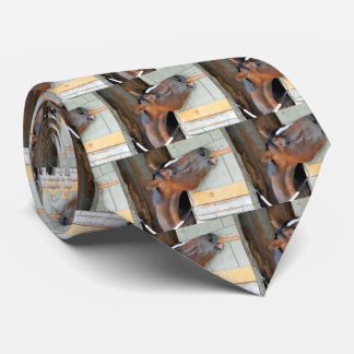 Hungry Horse Tie