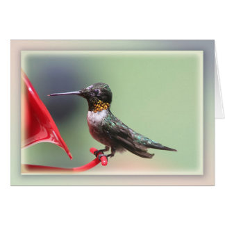 Hungry Hummer Too Card