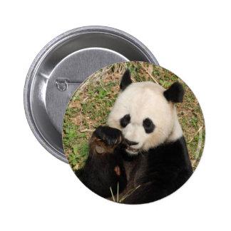 Hungry Panda Pinback Buttons