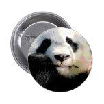 Hungry Panda Buttons