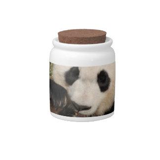 Hungry Panda Candy Jar