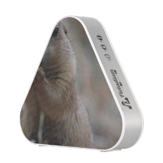 Hungry Prairie Dog Speaker