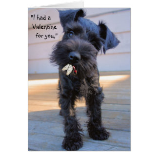 Hungry Puppy Valentine's Day Greeting  Card
