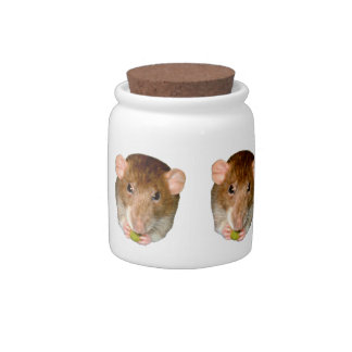 Hungry Rat Candy Jar