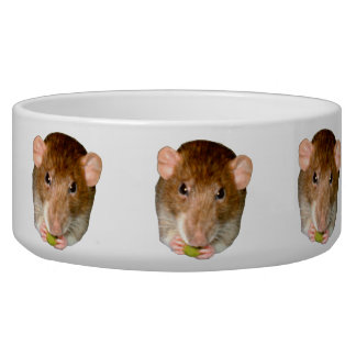 Hungry Rat Dog Bowl