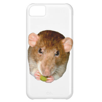 Hungry Rat iPhone 5 Case
