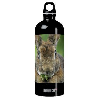 Hungry Rex Bunny Rabbit - Cute Water Bottle