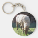 hungry sheep basic round button keychain