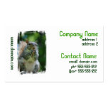 Hungry Squirrel Business Cards