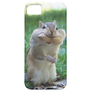 Hungry Squirrel iPhone SE/5/5s Case