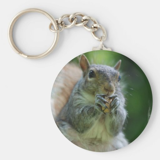 Hungry Squirrel Keychain