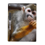 Hungry Squirrel Monkey Dry Erase Board