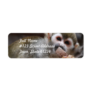 Hungry Squirrel Monkey Mailing Labels