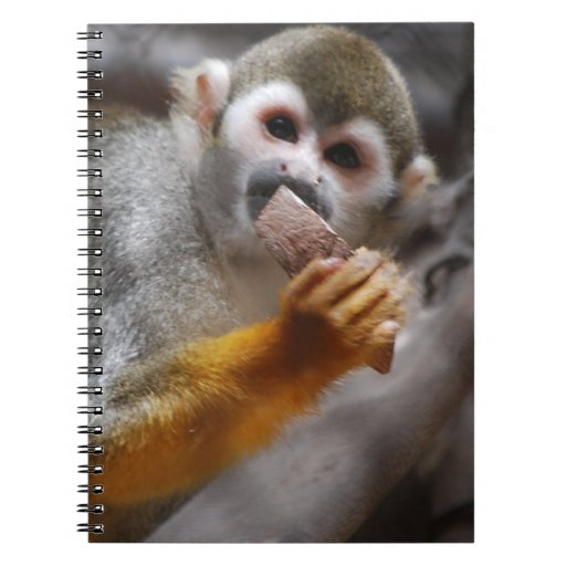 Hungry Squirrel Monkey Notebook