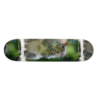 Hungry Squirrel Skateboard
