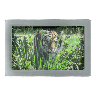 Hungry Tiger Belt Buckle