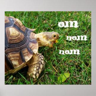 "Hungry Tortoise - ""Om nom nom"" Poster"