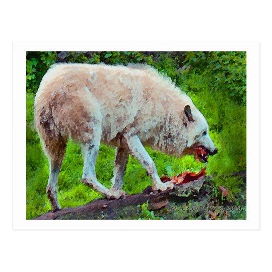 HungryWolf Postcard