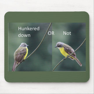 hunkered down or not bird mouse pad