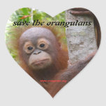 Hunt, a new orangutan orphan heart sticker
