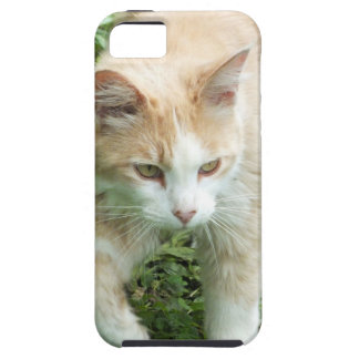 Hunter Cat iPhone 5 case