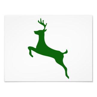 Hunter Green Deer Silhouette Photo Print