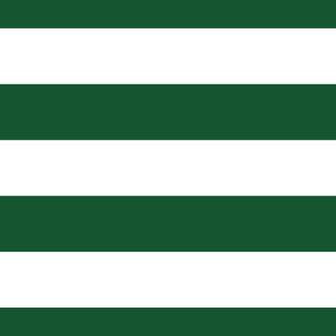 Hunter Green Wide Stripes Shower Curtain