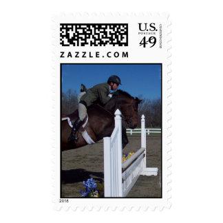 Hunter Jumper Horse Postage Stamp