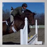 Hunter Jumper Horse Poster