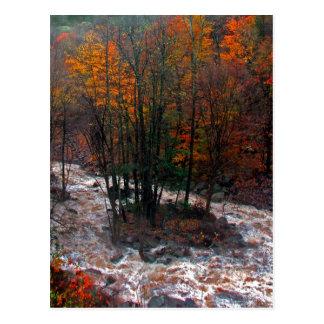 Hunter Mountain Fast Water Postcard