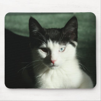 Hunter - the dark side mouse pad