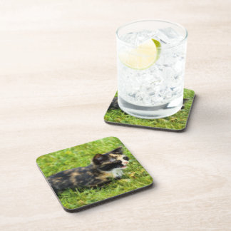 Hunting Beverage Coaster