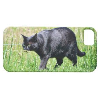 Hunting Black Cat - iPhone 5 Case