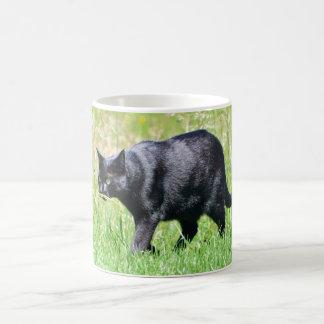 Hunting Black Cat - Mug