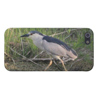 Hunting Black-Crowned Night-Heron 4/4s Spec Cover For iPhone SE/5/5s