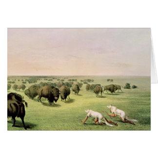 Hunting Buffalo Camouflaged Card