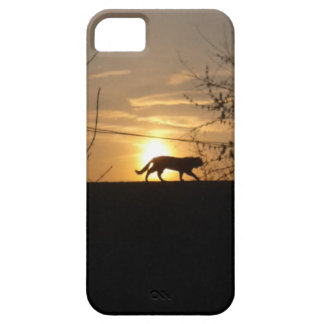 Hunting iPhone 5 Covers