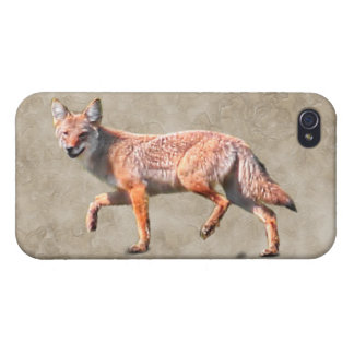 Hunting Coyote on Camouflage BG - Prairie Wolf iPhone 4 Cover