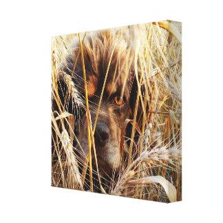 Hunting Dog Canvas