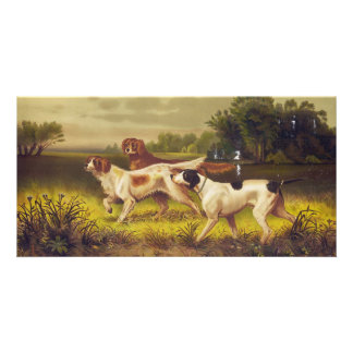 Hunting Dogs Sport in July by Hoover Custom Photo Card