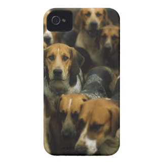 Hunting foxhounds Galway Blazers Ireland iPhone 4 Case-Mate Case