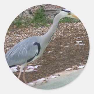 Hunting Heron Classic Round Sticker