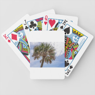 hunting island south carolina ocean beach landscap bicycle playing cards