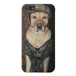 Hunting Lab iPhone 5 Case