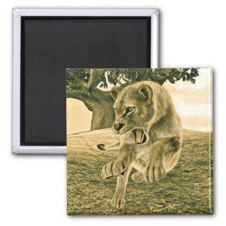 Hunting Lioness 2 Inch Square Magnet